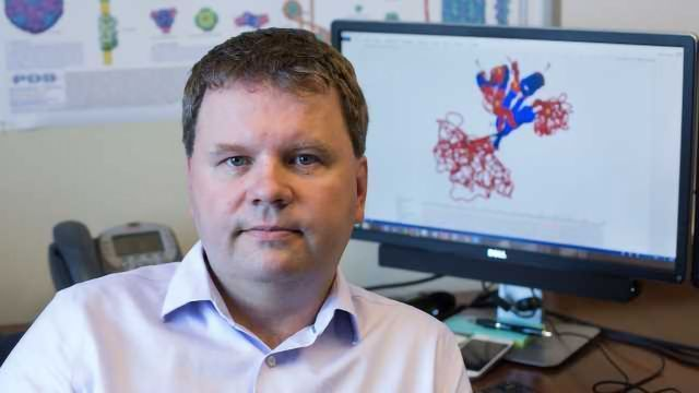 Bioinformatics to Help Understand Intrinsically Disordered Proteins