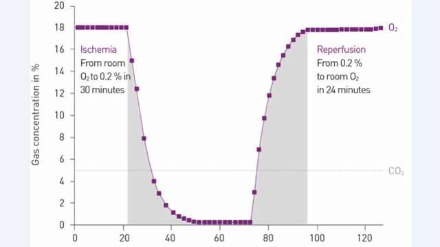 The World's First In Vitro Reproduction of Ischaemia/Reperfusion Conditions in A Microplate Reader