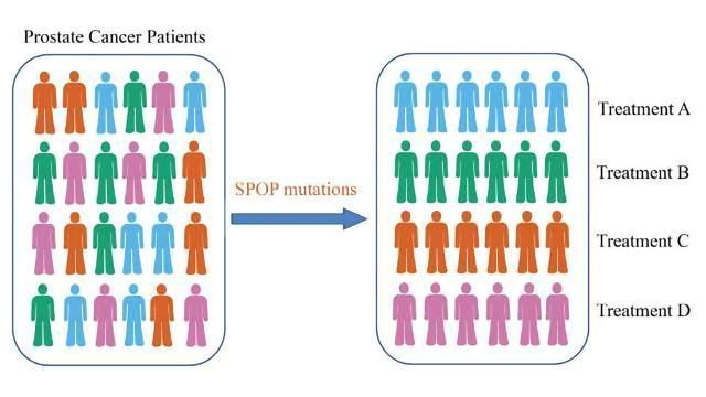 Major Cause of Drug-resistance in Prostate Cancer Patients Identified