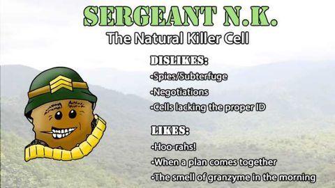 Natural Killer Cells