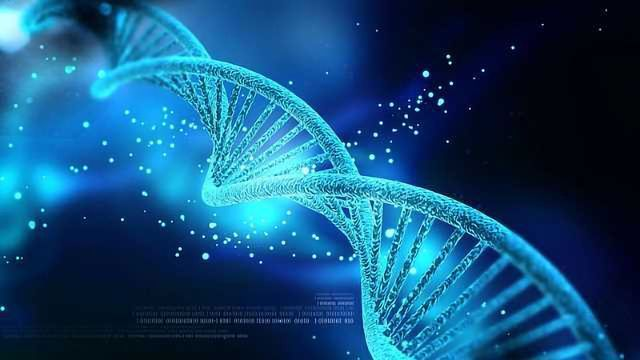 Ancient Genes Take on New Functions as Master Regulators