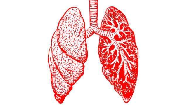 Encouraging Step Towards a Potential Therapeutic Strategy for Asthma