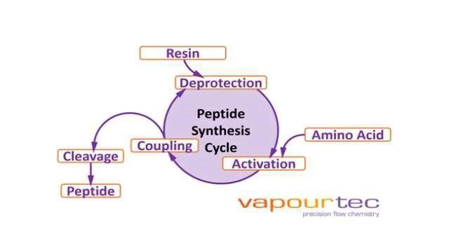 Vapourtec Collaboration with NPM Drives New Flow Technology