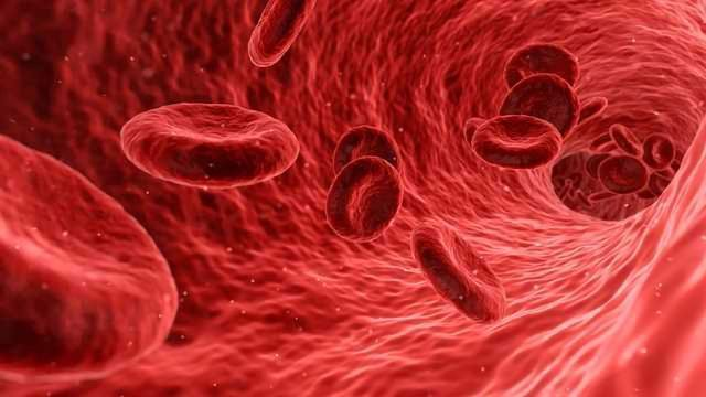 Blood Test for Colitis Screening Could Reduce Dependence on Colonoscopy