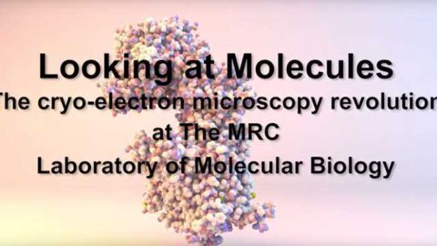 Looking at Molecules: The cryo-electron microscopy revolution at The MRC LMB