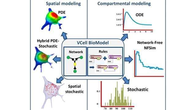 Virtual Cell Supercomputer for Drug Interaction Predictions
