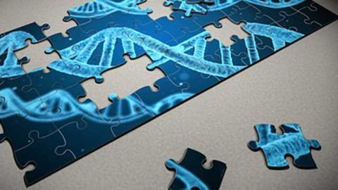 Finishing the Jigsaw: Identifying How Drugs Interact with Molecules Could Lead to Better Treatments