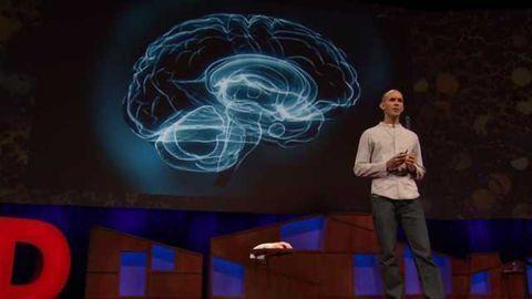 Anil Seth Explains How Your Brain Hallucinates Consciousness