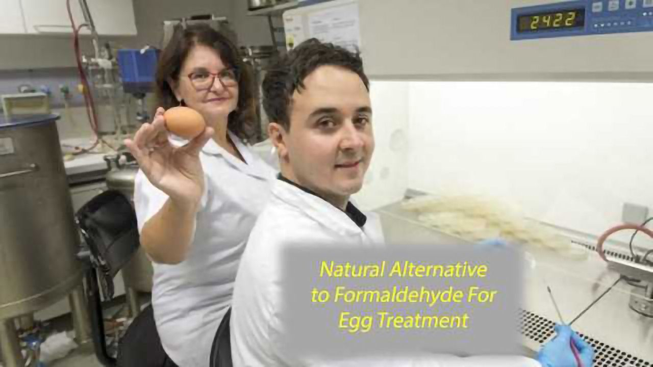 Natural Treatment Alternative to Formaldehyde Eliminates Germs From Hatching Eggs
