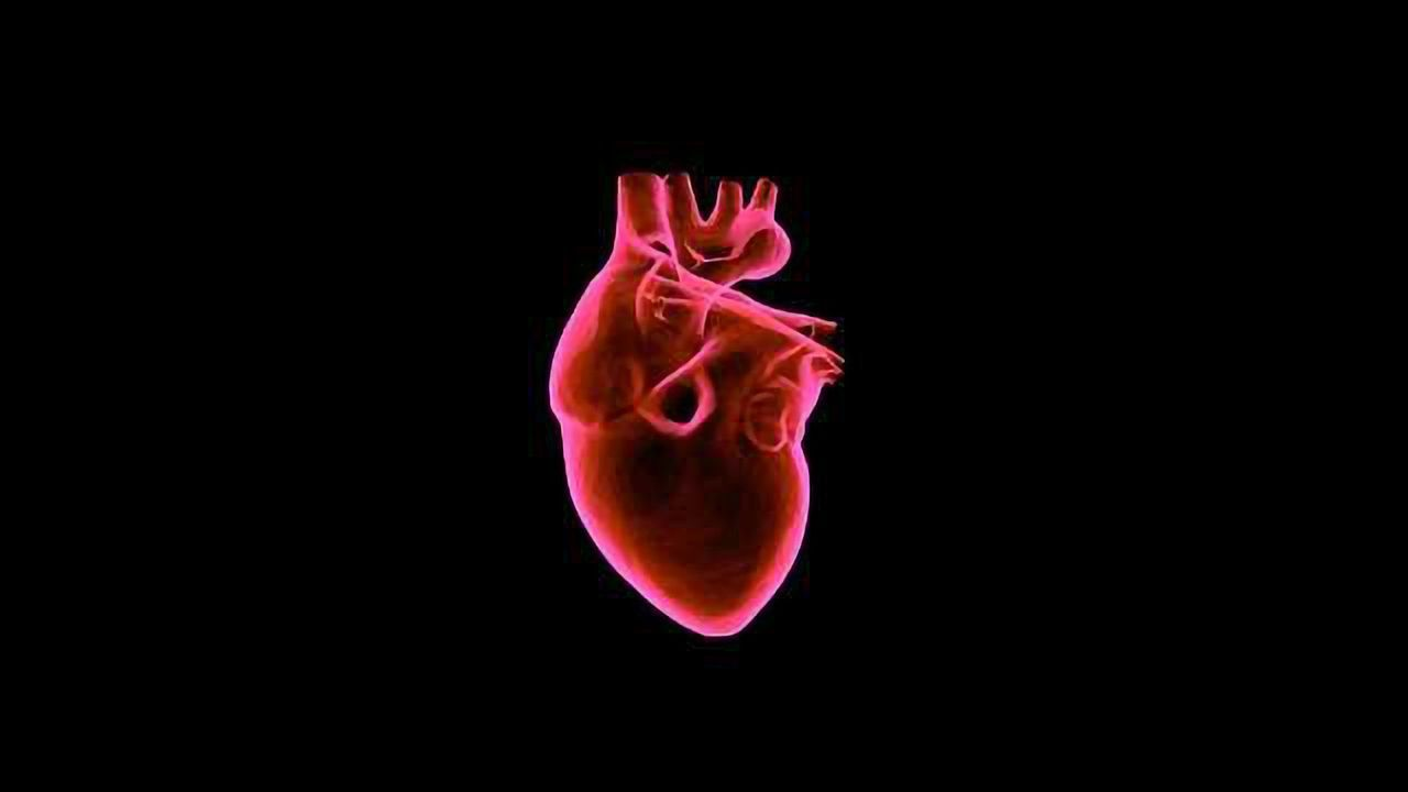Overexpression of a Cell-cycle Activator Gene Enhances Repair of Dead Heart Muscle