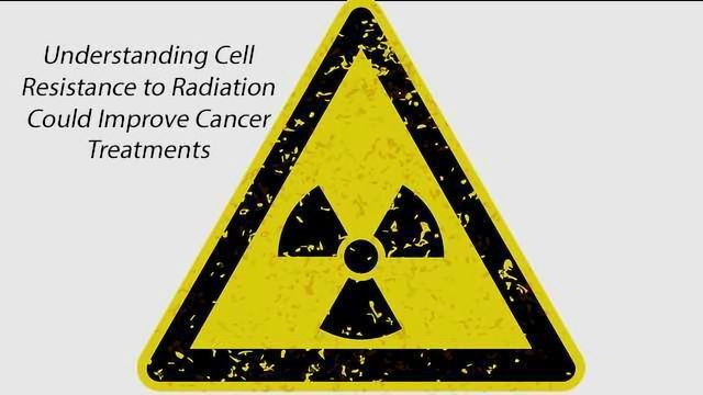 Study of What Makes Cells Resistant to Radiation Could Improve Cancer Treatments