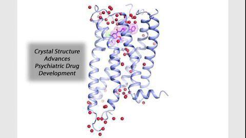 Key Psychiatric Drug Target Comes Into Focus