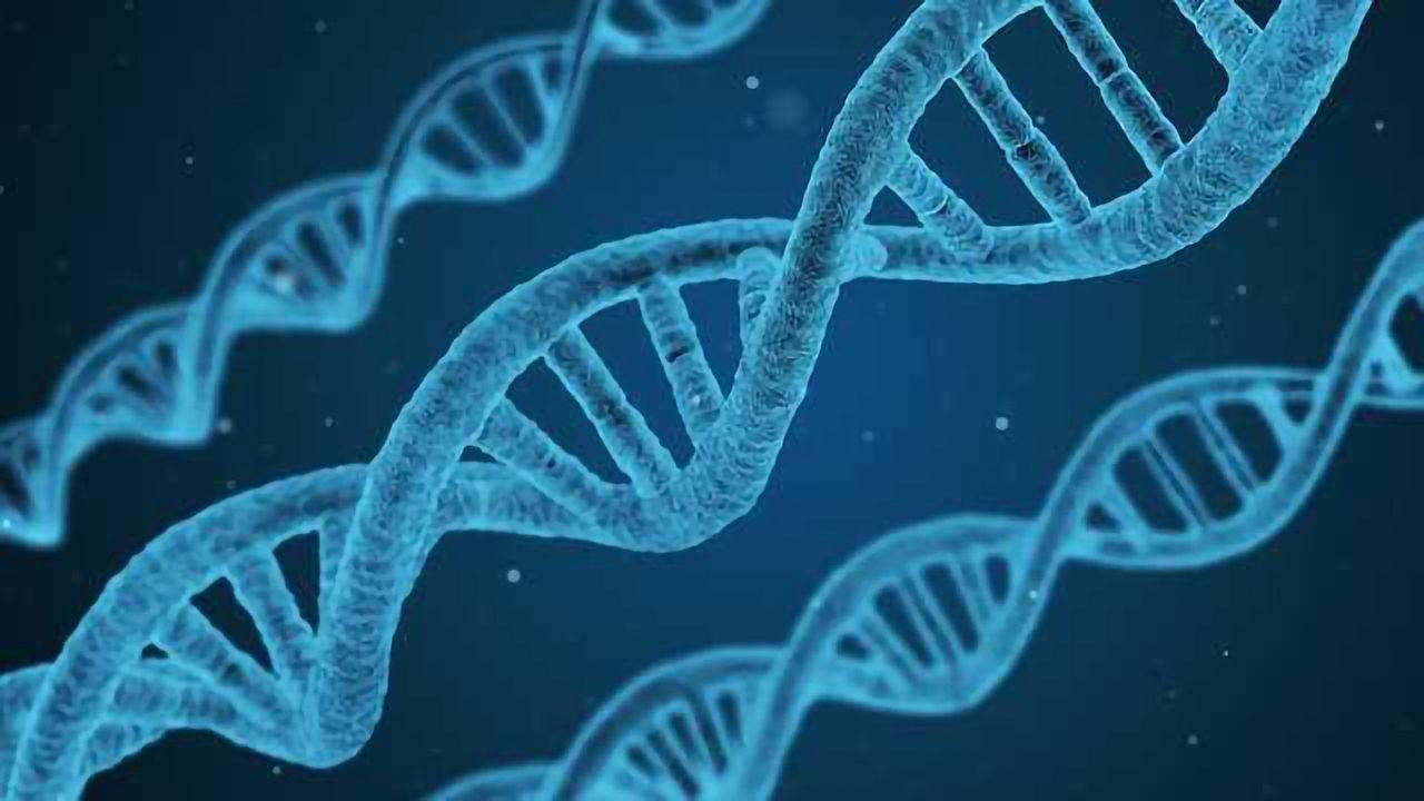 Fabric Genomics Partners to Improve Pediatric Care