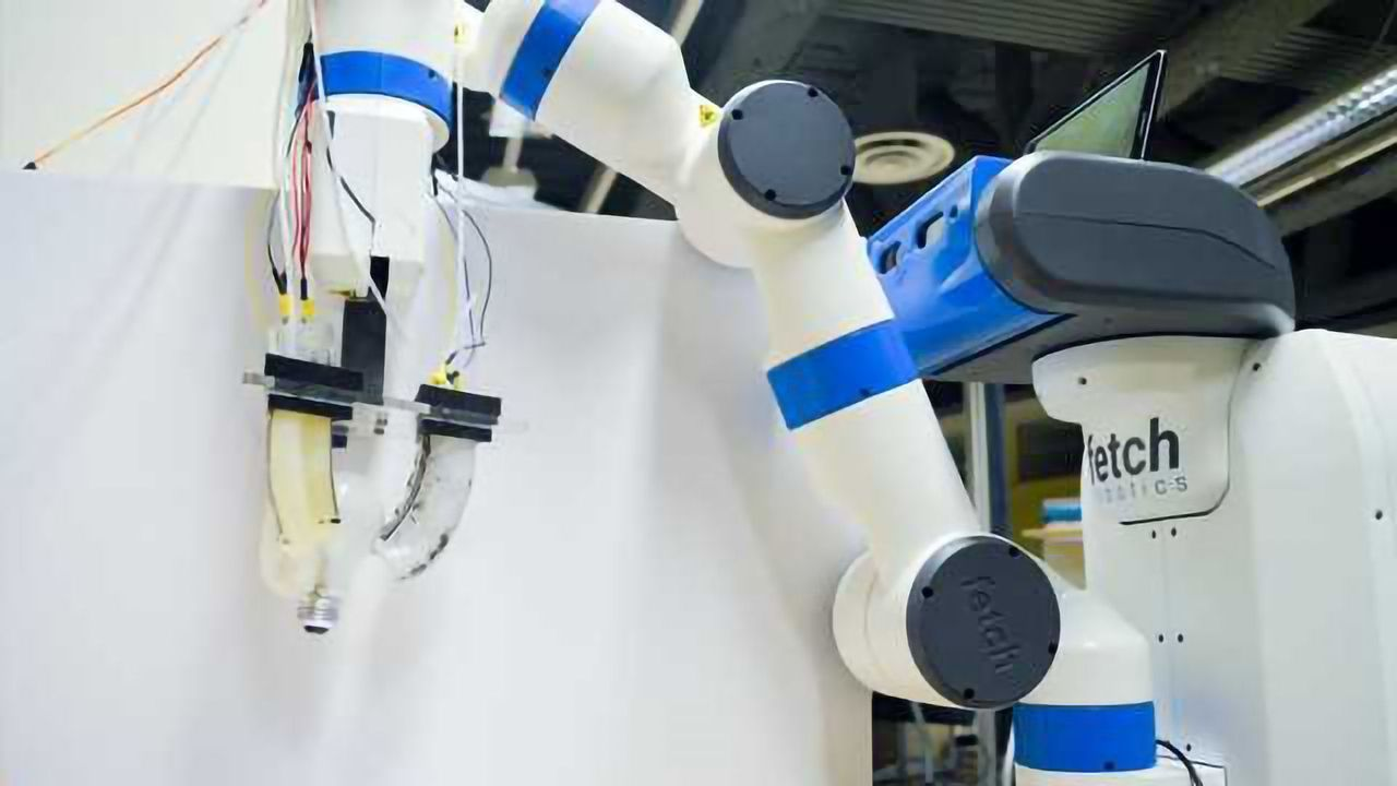 Engineering Team Develop Gripper Robot That Doesn't Need Training