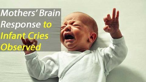Mothers' Brain Areas Activated by Infant Crying Found