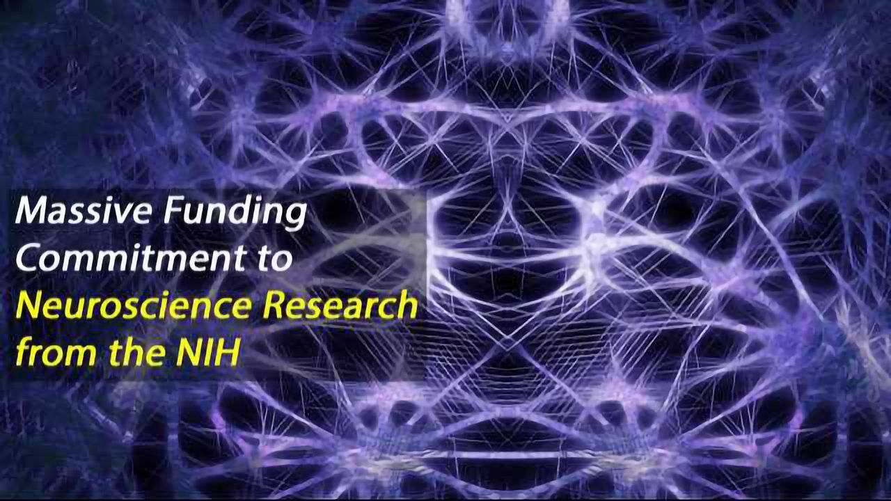 NIH BRAIN Initiative Builds on Early Advances