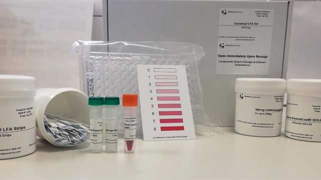 SYGNIS AG Announces the launch of the Universal Lateral Flow Assay kit