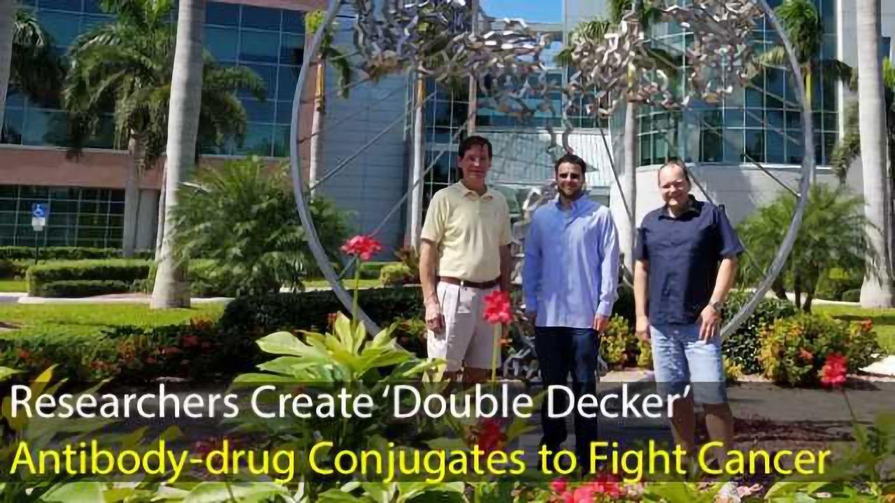 New 'Double Decker' Antibody-drug Conjugates Fight Cancer