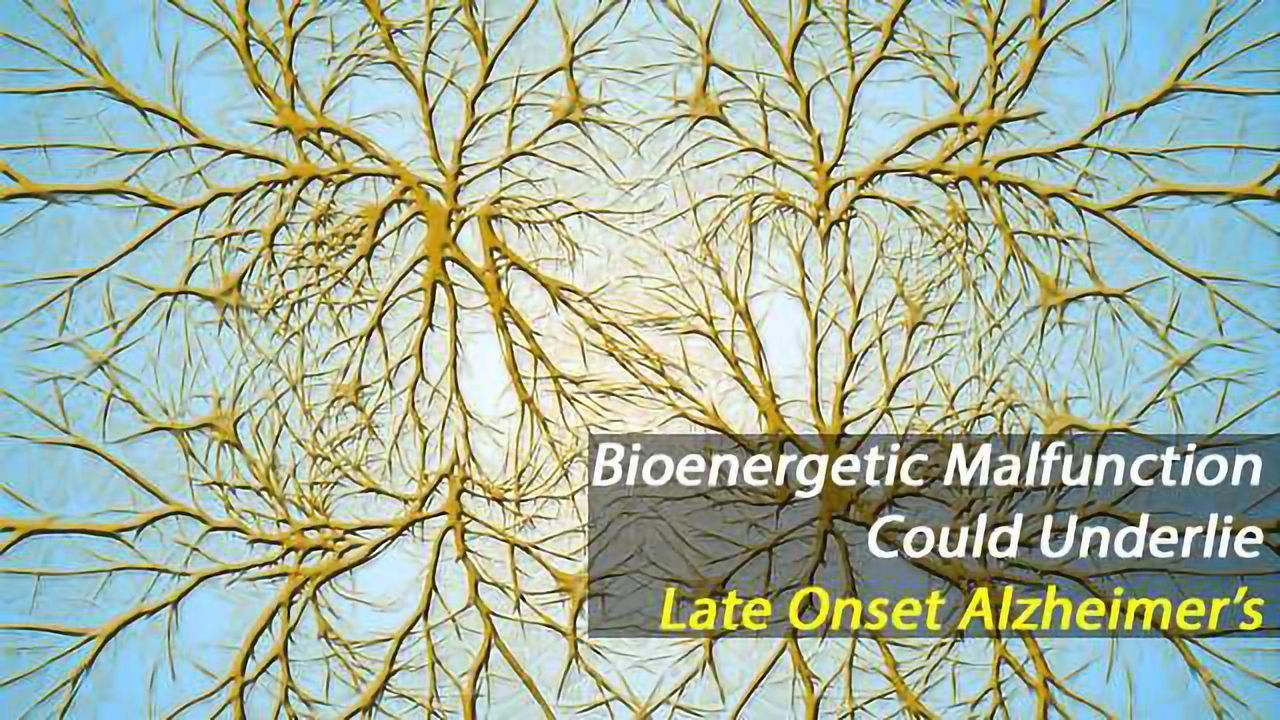 Bioenergetic Changes Seen in Stem Cells from Late Onset Alzheimer's Disease Patients
