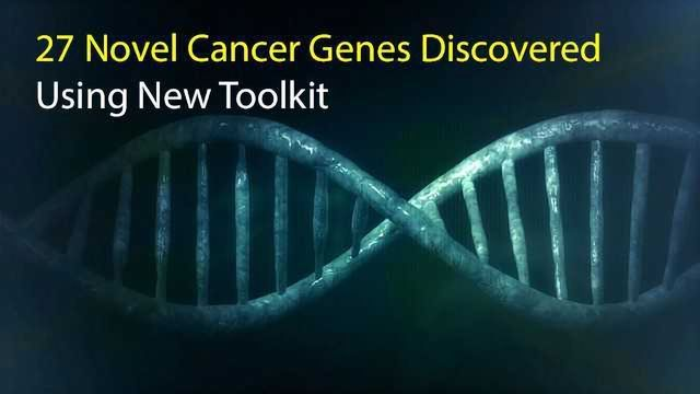 27 Novel Cancer Genes Discovered Using New Toolkit