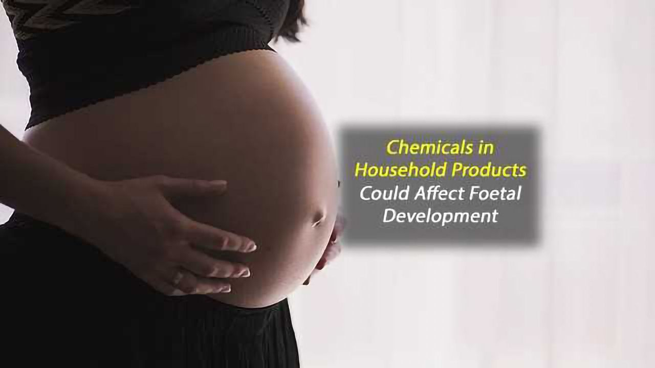 """Exposure to """"Safe"""" Levels of BPA Could Affect Foetal Development"""