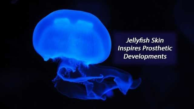 Jellyfish-Inspired Electronic Skin Glows When it Gets Hurt