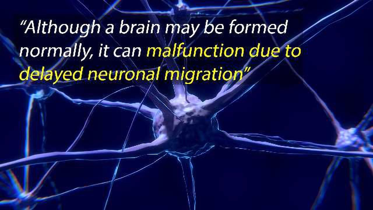 Rescue-able Disruption of Neuronal Migration That Induces Autism-like Behavior in Rats