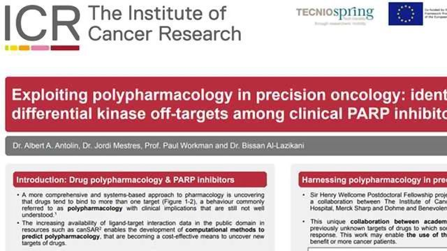 Exploiting Polypharmacology in Precision Oncology: Identification of Differential Kinase Off-targets Among Clinical PARP Inhibitors
