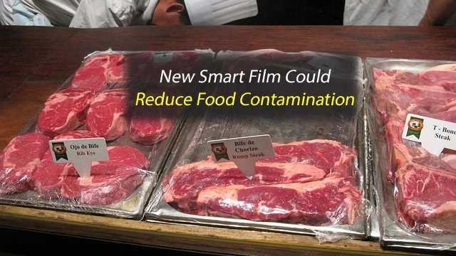 "New ""Sugar-Glass"" Film Uses Viruses to Kill Harmful Bacteria in Food"