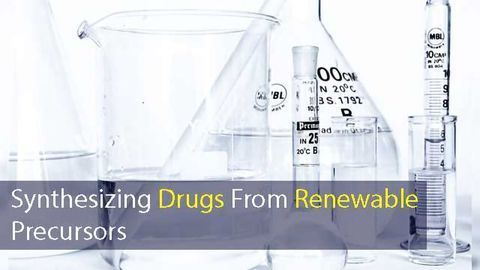 Chemists Develop Method to Synthesize Drugs From Renewable Precursors