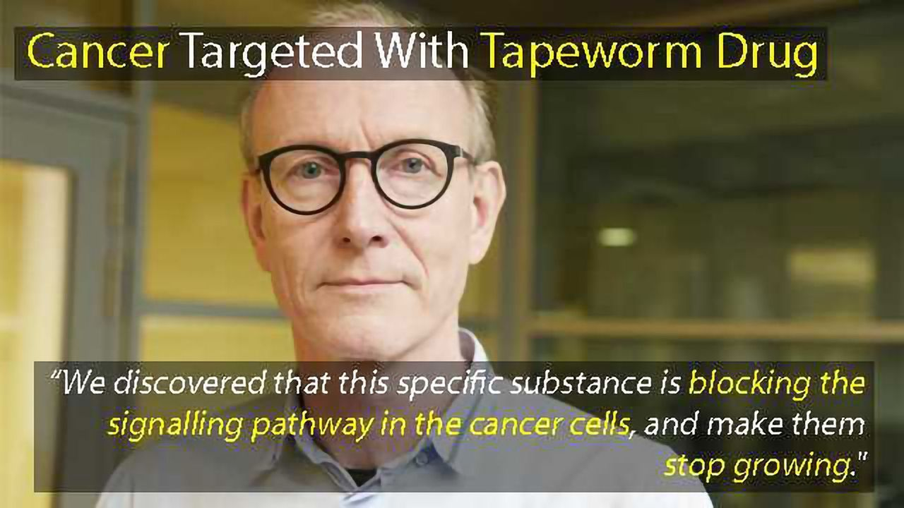 Prostate- and Colon Cancer Targeted With Tapeworm Drug