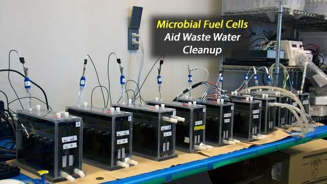 Cleaning Okinawan Pig Farm Wastewater with Microbial Fuel Cells