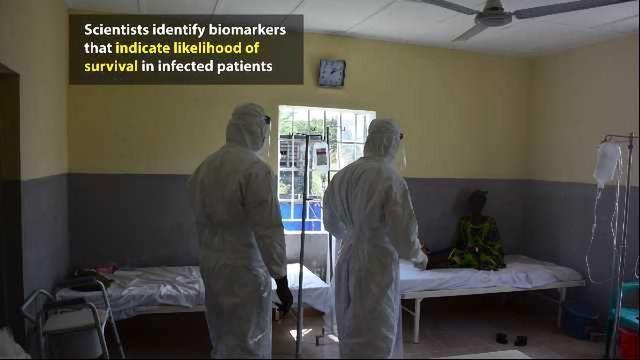 Unlocking the Secrets of Ebola