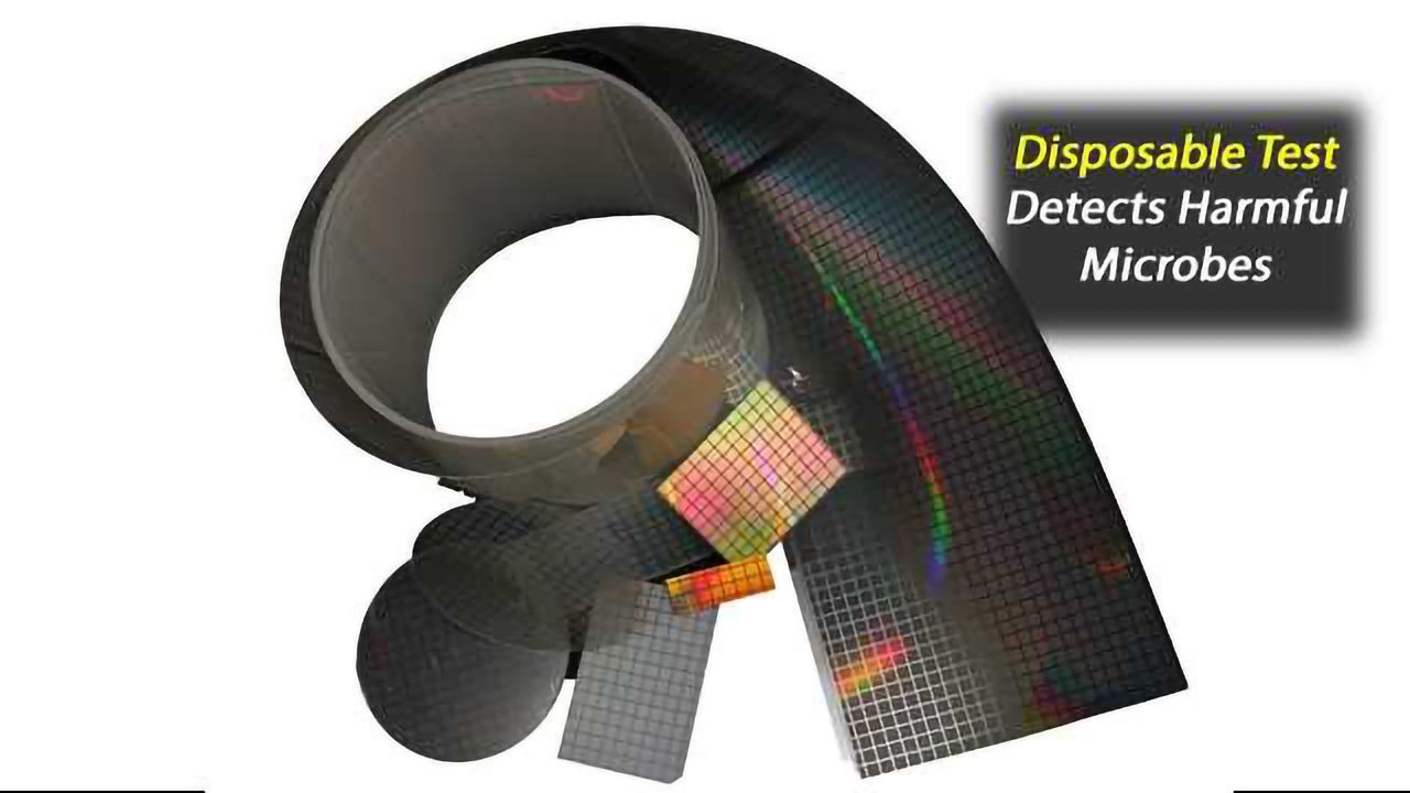 Disposable Optical Test Substrate for Detecting Harmful Microbes