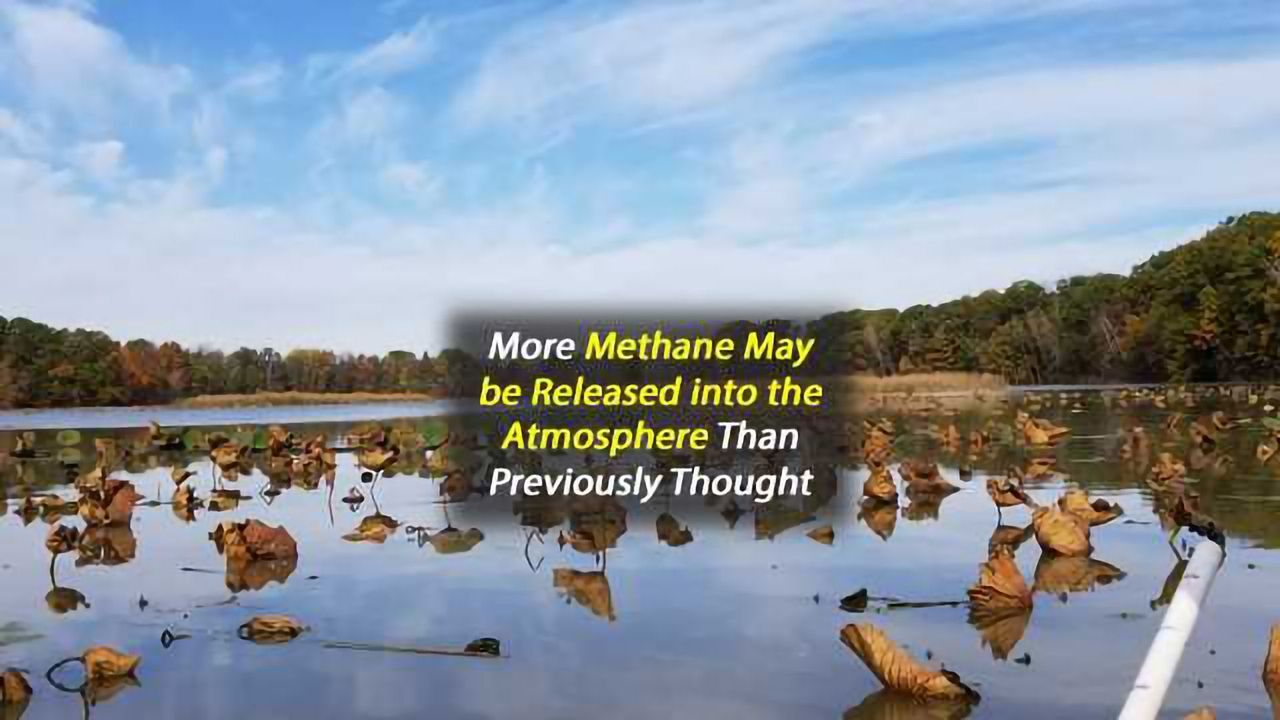 Source of a Potent Greenhouse Gas Identified