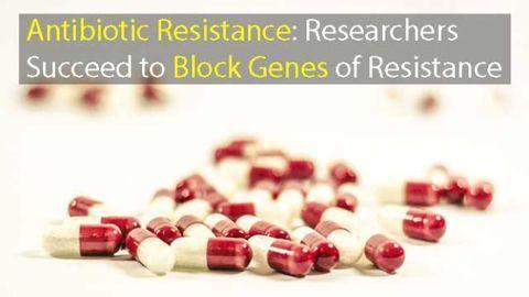 Antibiotic Resistance Genes Successfully Blocked