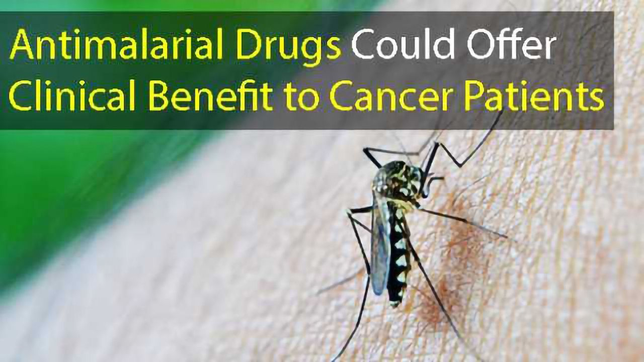 Antimalarial Drugs Could Offer Clinical Benefit to Cancer Patients