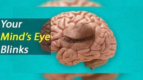 Mind's Eye Blink: Momentary unconscious gaps in visual perception.