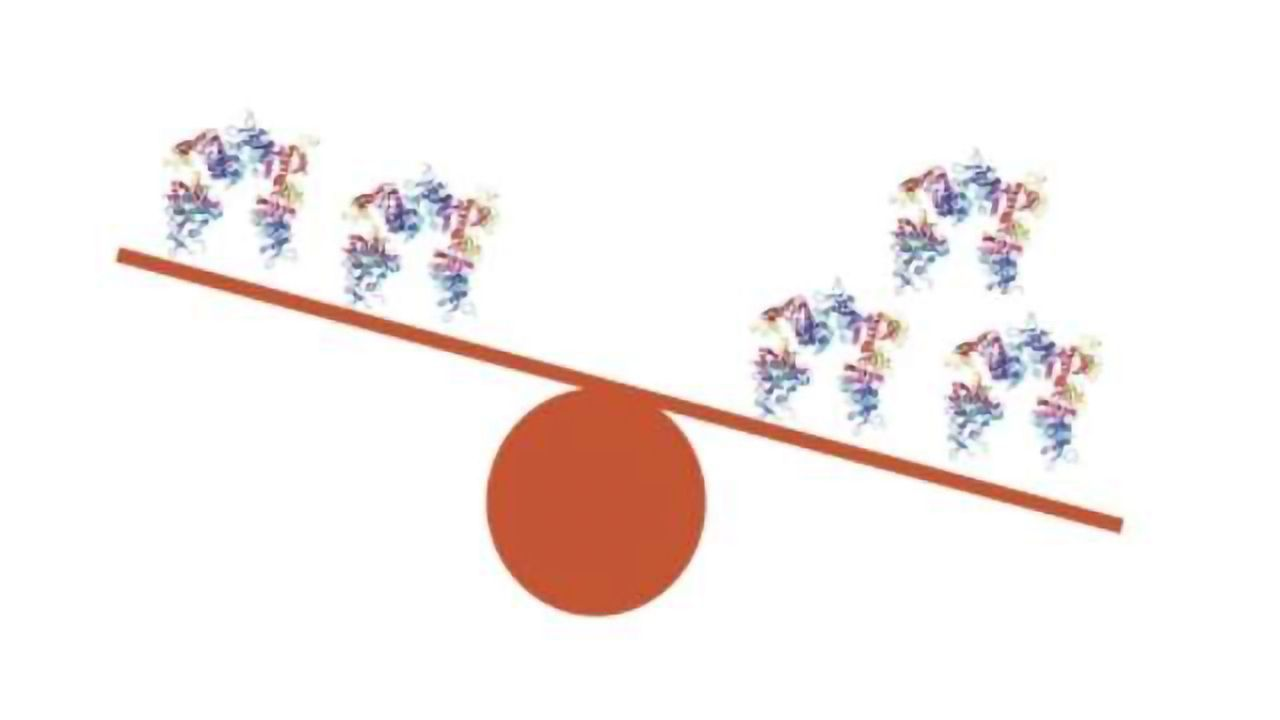 Trisomy 21: Research Breaks New Ground
