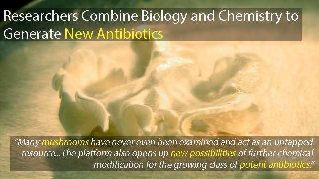 Researchers Develop a Platform to Produce Brand-new Antibiotics
