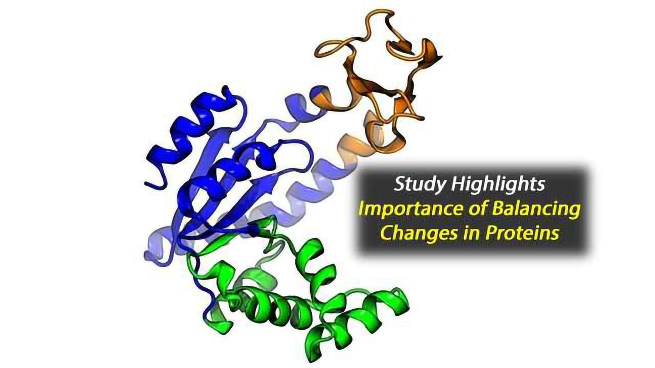 Paired Mutations: A New Approach to Discovering the Shape of Proteins
