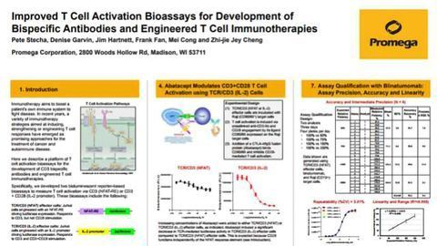 Improved T Cell Activation Bioassays for Development of Bispecific Antibodies and Engineered T Cell Immunotherapies