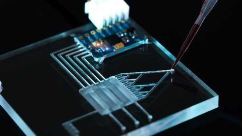 Emerging Trends and New Developments in Microfluidics