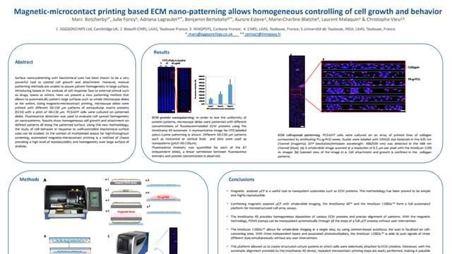 Magnetic-microcontact printing based ECM nano-patterning allows homogeneous controlling of cell growth and behavior