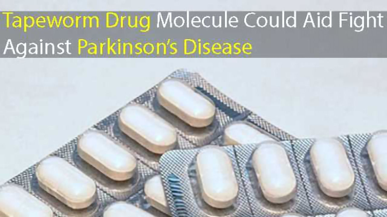 Tapeworm Drug Molecule Could Aid Fight Against Parkinson's Disease