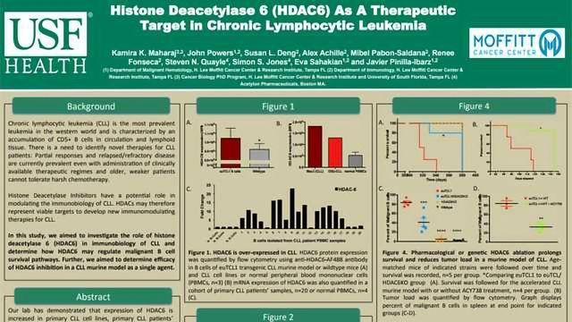 Histone Deacetylase 6 (HDAC6) As A Therapeutic Target in Chronic Lymphocytic Leukemia