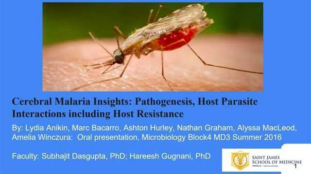 Cerebral Malaria Insights: Pathogenesis, Host Parasite Interactions including Host Resistance