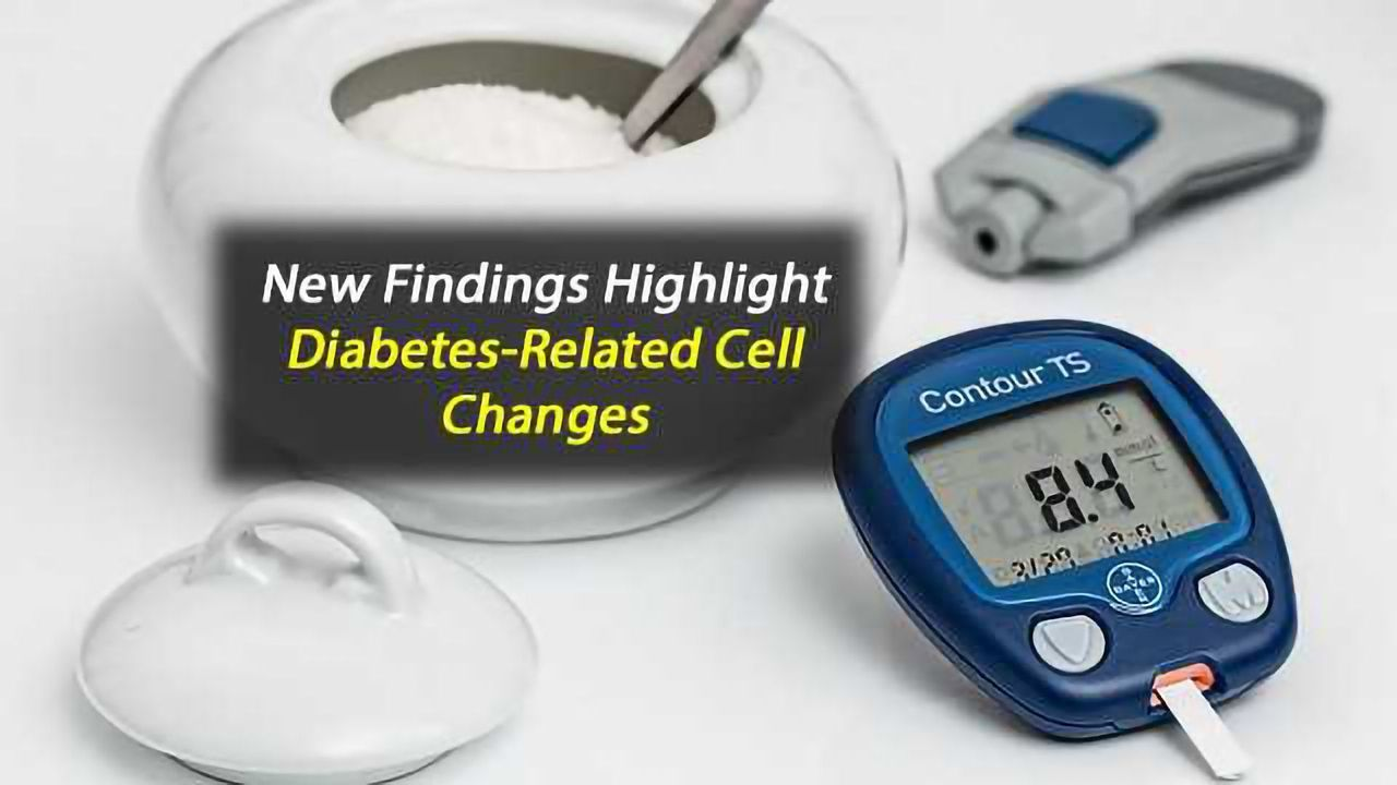 Changes Identified in Body Cells During Type2 Diabetes Onset