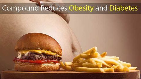 Anti-stress Compound Reduces Obesity and Diabetes