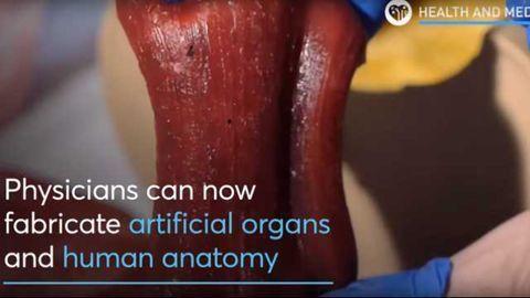 3D Printed Human Organs